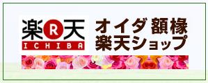 楽天(オイダ額縁楽天ショップ)